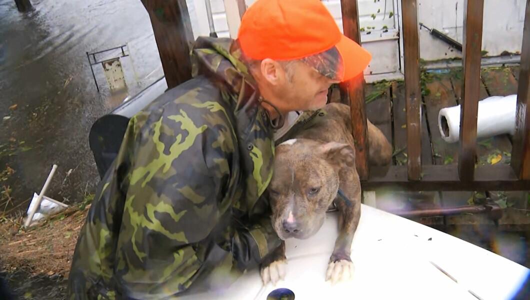 在这张来自视频的照片中,一名居民周五在北卡罗来纳州杰克逊维尔的洪水中乘船救出了一只狗。随着洪水从飓风佛罗伦萨崛起,一些居民正在志愿在淹水的街区乘船进行动物救援。