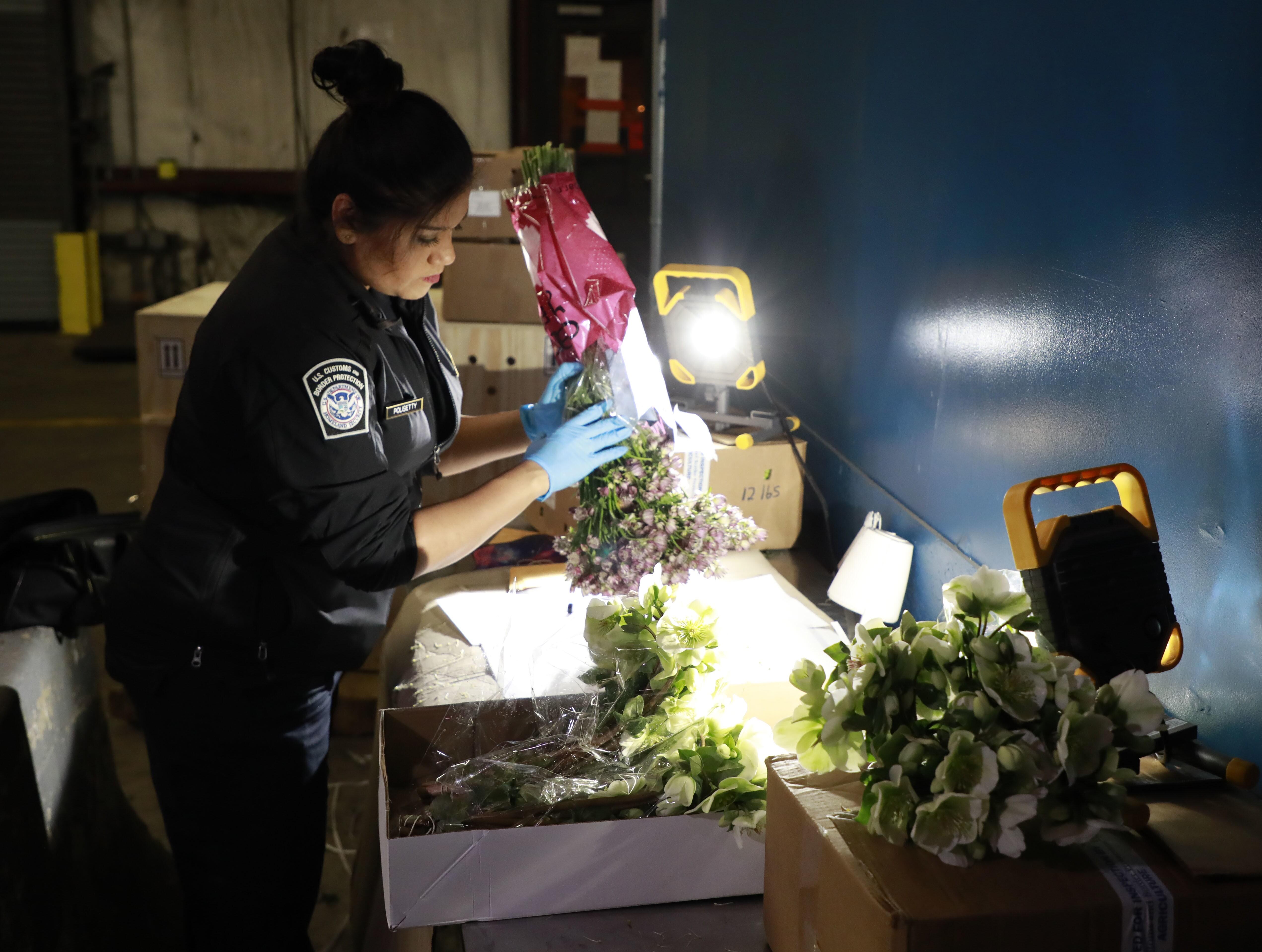 CBP在杜勒斯国际机场检查切花
