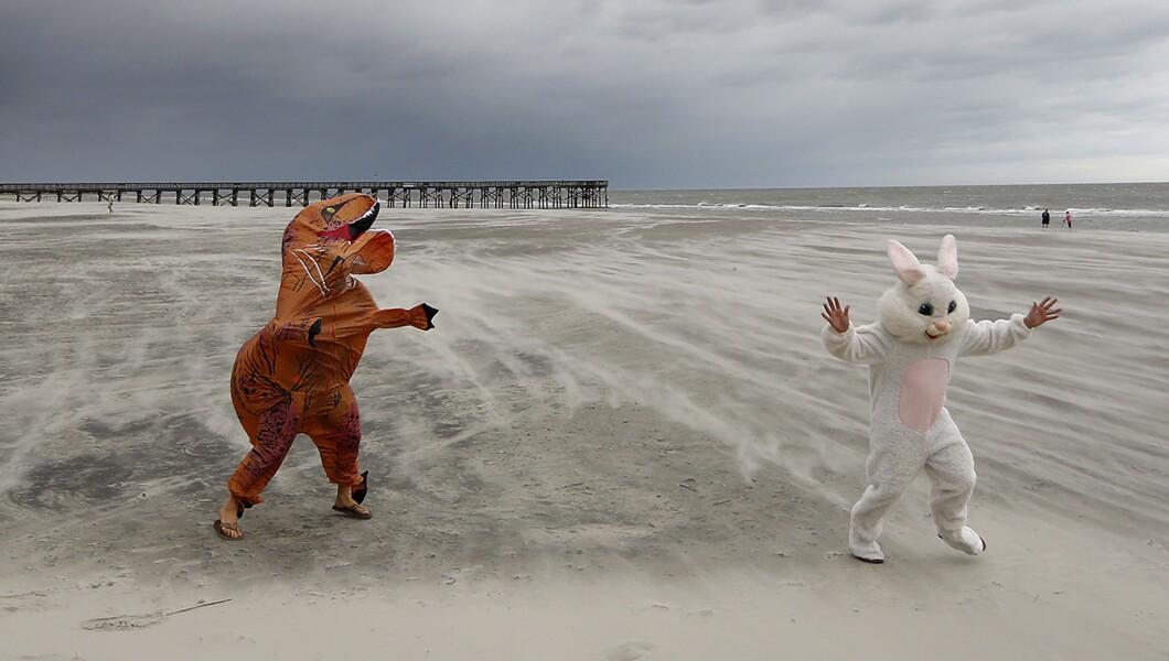 周五,两名海滩爱好者决定打扮成复活节兔子和T-Rex,体验强风和吹沙,因为热带风暴佛罗伦萨星期五接近Palms,S.C。