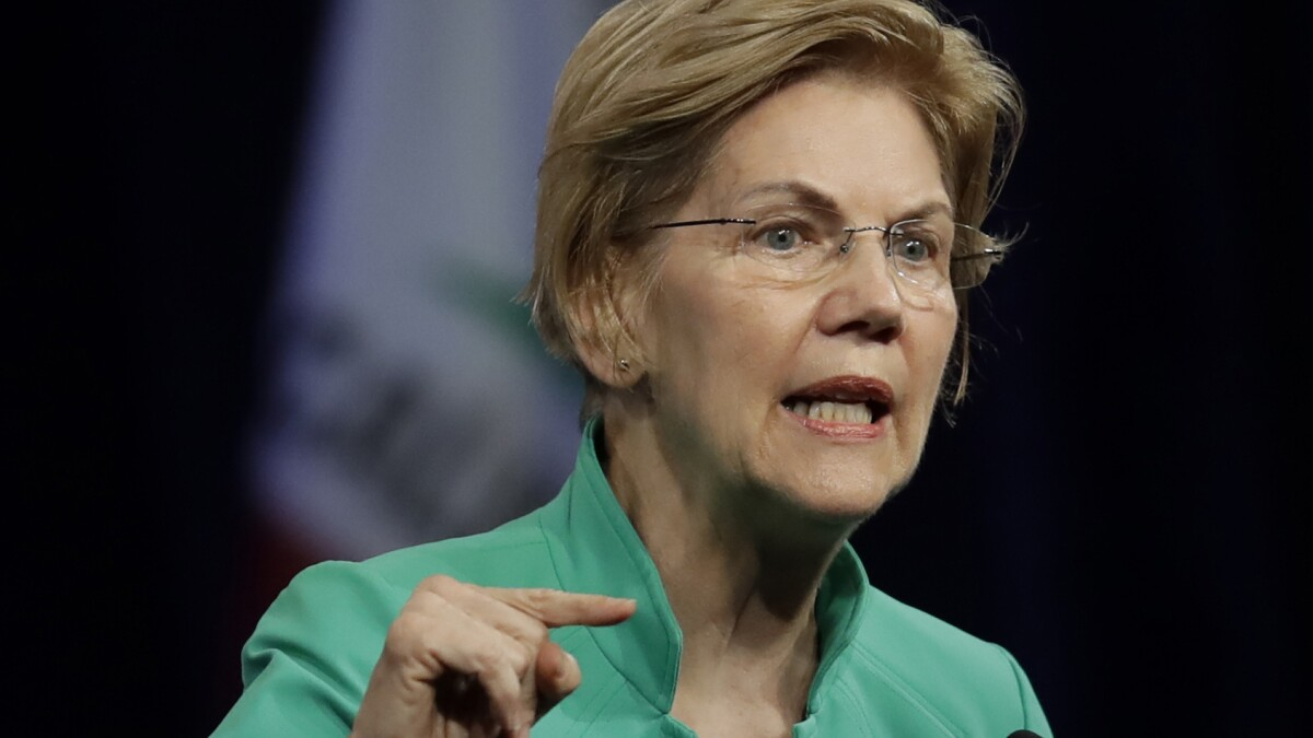 Warren slammed Palantir over ICE contract but collected campaign cash from its employees