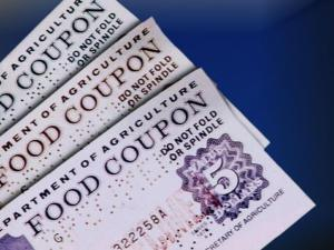Are food stamps a perk for 'paid government volunteers'?