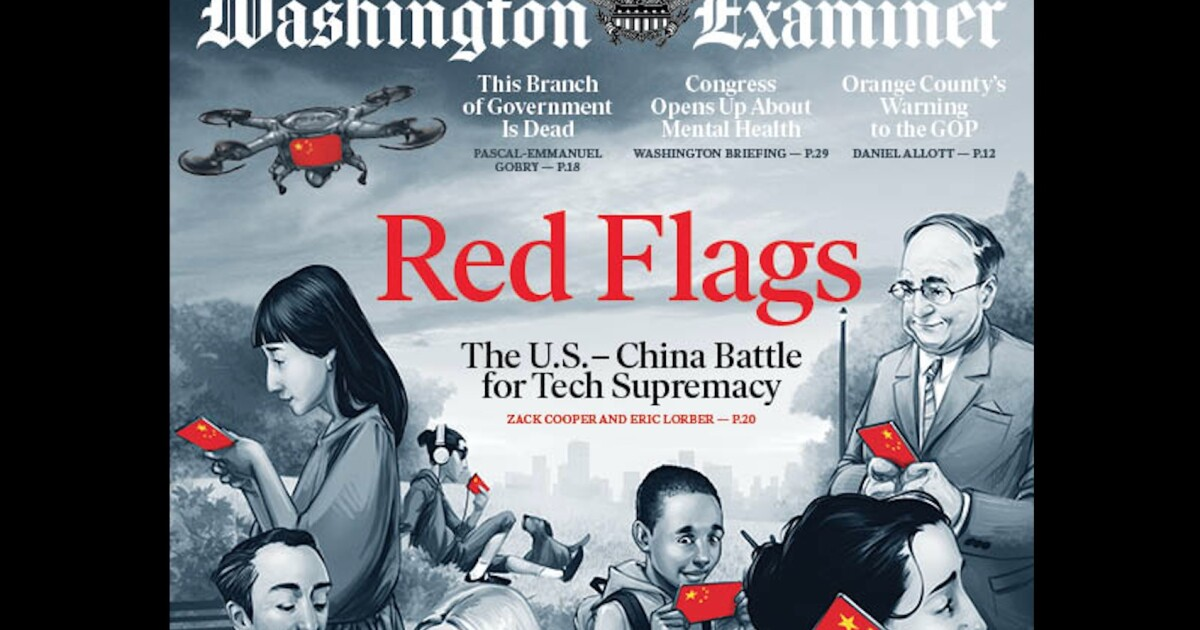 Image result for red flags washington examiner