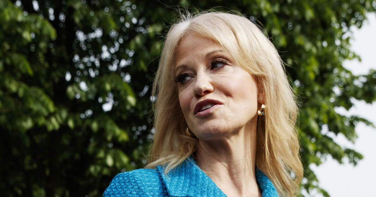 Kellyanne Conway: A Trump rally with attendees spaced apart 'would look more like a Biden rally'