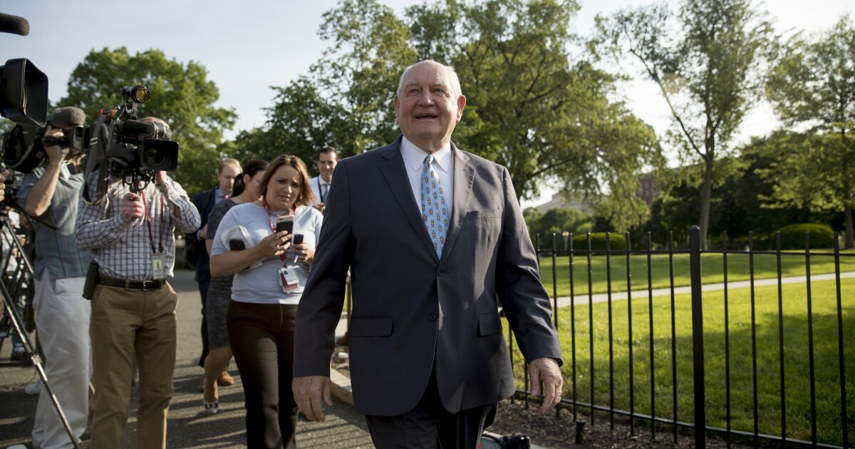 USDA chief Sonny Perdue promises $16B for farmers to offset China trade war losses