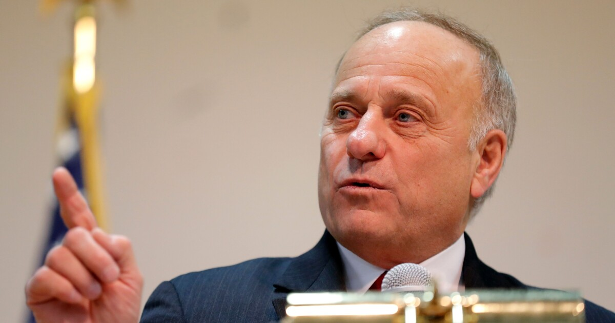 Undaunted, Steve King pushes to make English the official language of the US