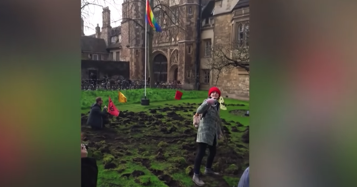 'Digging for oil': Climate change activists destroy UK university lawn
