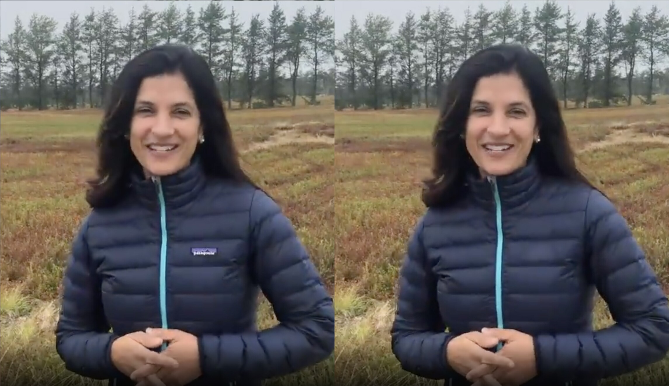 Top Democrat from L.L. Bean home town erases logo from her Patagonia jacket in campaign video