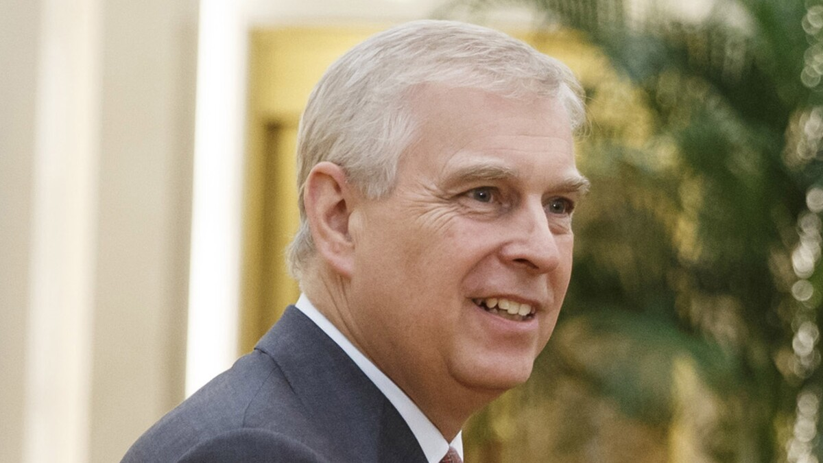 Prince Andrew claims he is 'at a loss' to understand friend Epstein's 'lifestyle'