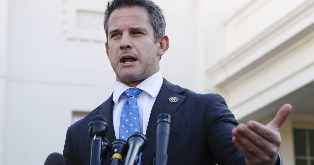 Adam Kinzinger says more information needed after reports...