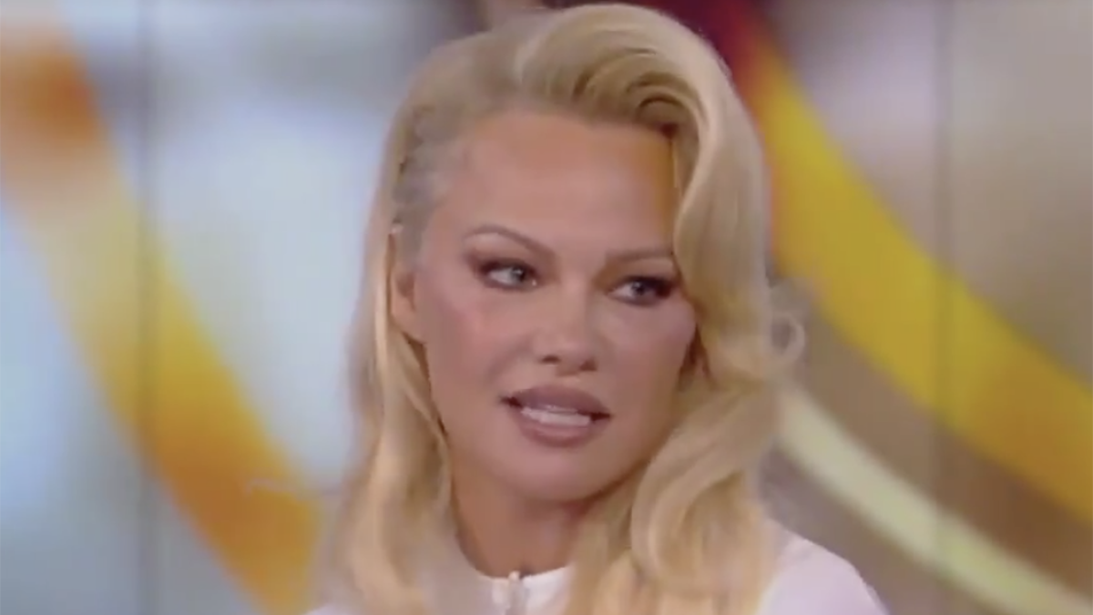 Pamela Anderson is a washed-up Russia apologist, not a #Resistance hero