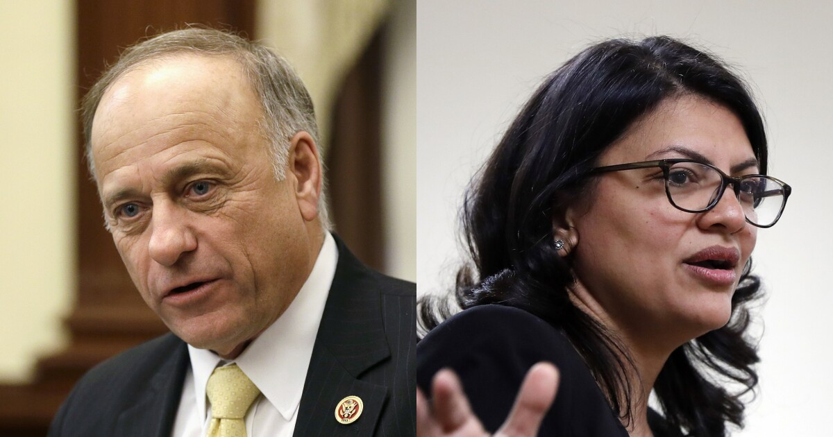 Republicans sanctioned Steve King. Why won't Democrats even criticize Rashida Tlaib for promoting anti-Semitism?