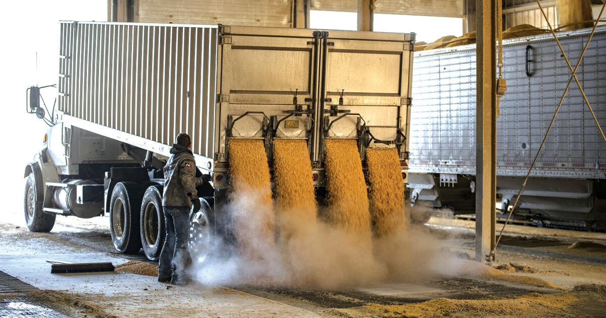 Trump's ethanol edge