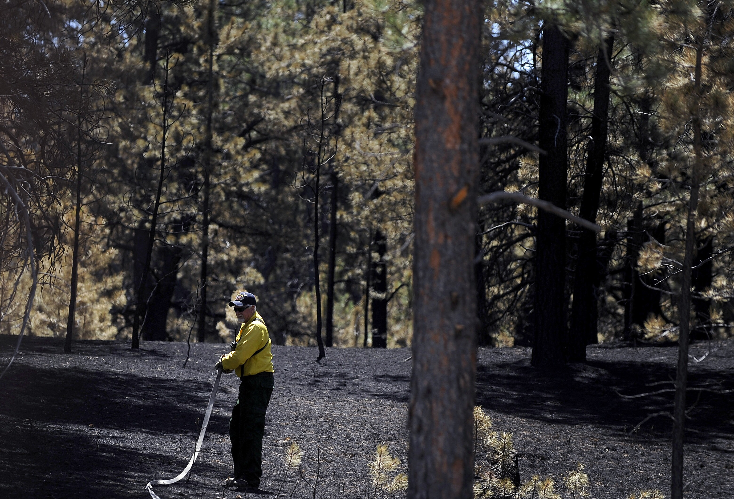 Expert warns terrorists may be setting wildfires across American West