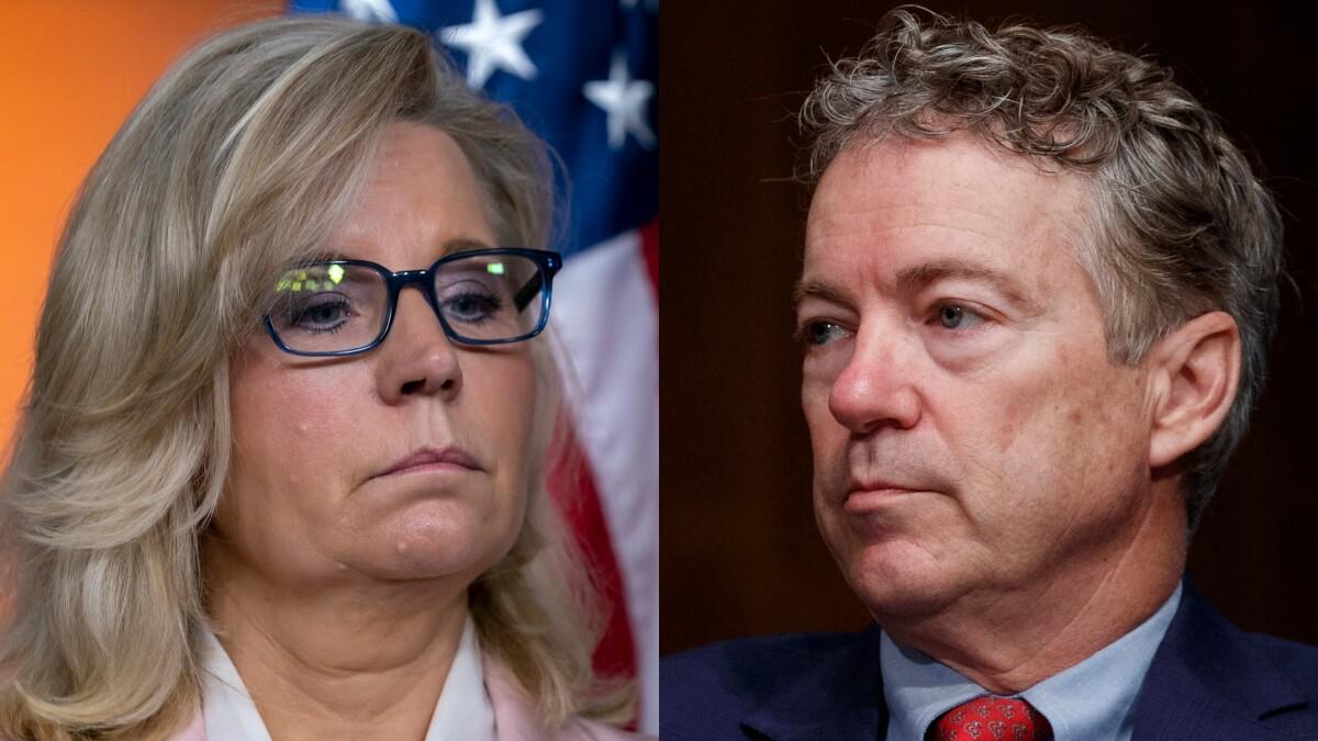 Liz Cheney on feud with Rand Paul: 'I enjoyed it'