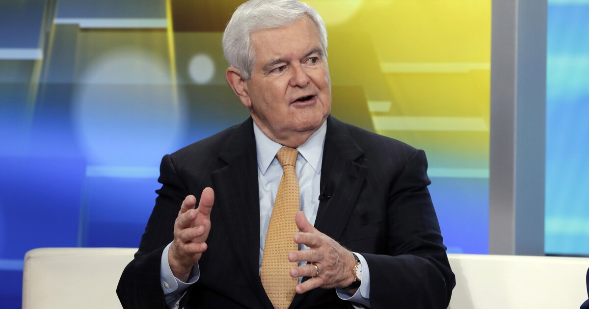 Gingrich: Pelosi's 'whacked' plan to hit Trump on economy shows how 'deeply out of touch' she is