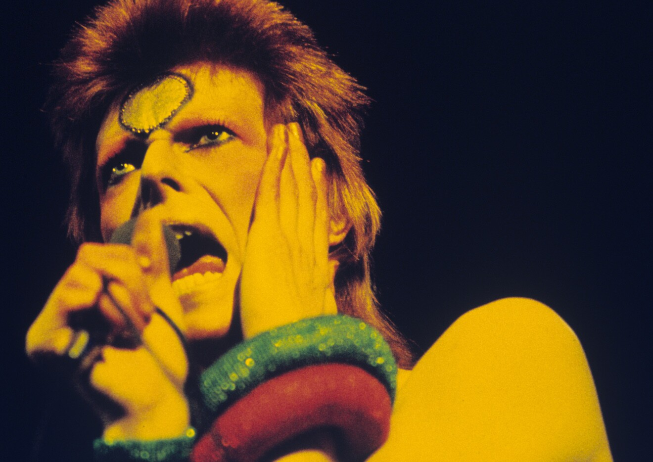 A New Biography Tells the Story of All the David Bowies
