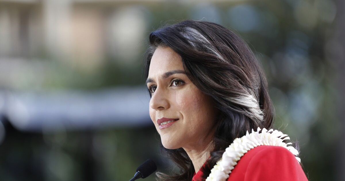 Tulsi Gabbard: WikiLeaks 'spurred some necessary change'