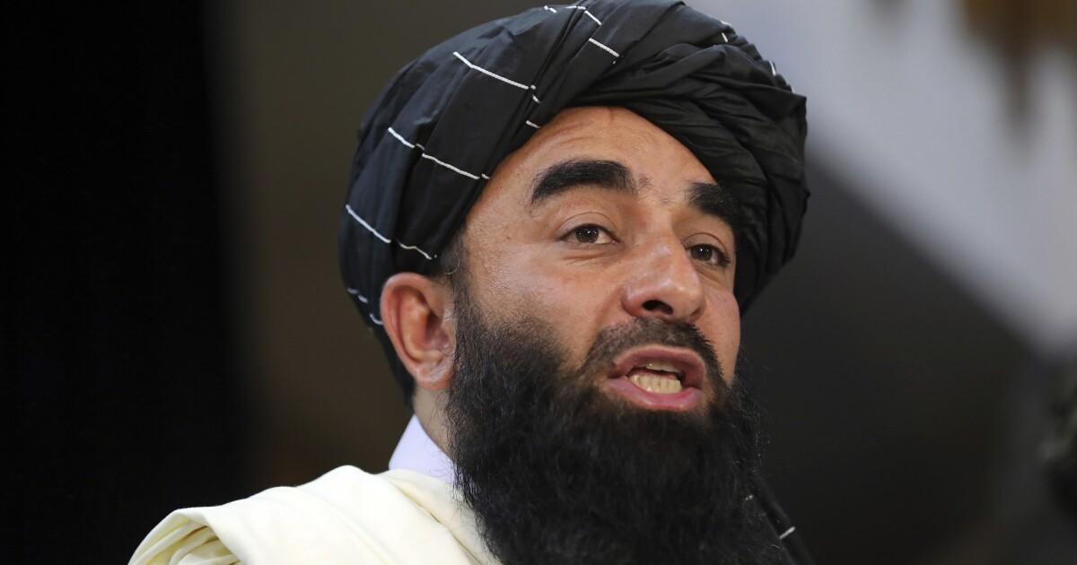 Taliban announce hunt for ancient treasure