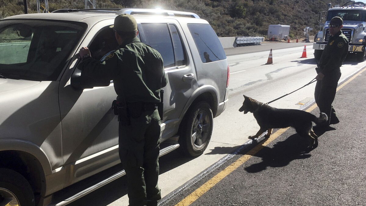 Marijuana smuggling smoked under Trump, down 80 percent