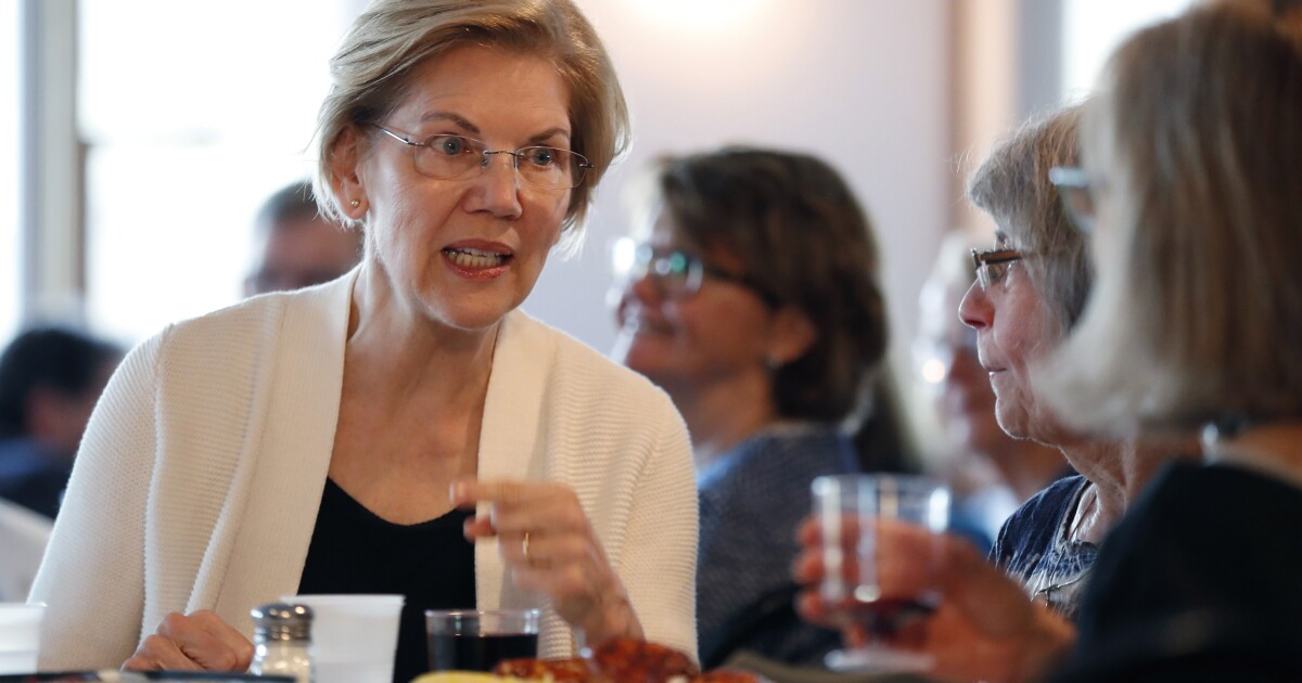 'Bernie without the baggage': Warren positions herself as liberal alternative in New Hampshire