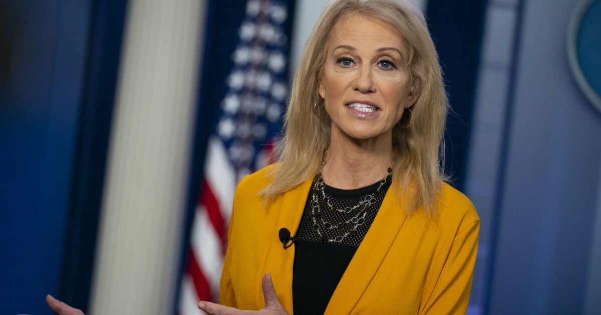 Kellyanne Conway: Biden sounds like a 'co-ed at the end of a frat party' for promising female vice president