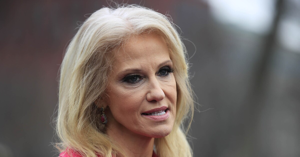 Kellyanne Conway calls New Zealand shooter an 'eco-terrorist', rejects his claim Trump is a symbol of 'white identity'