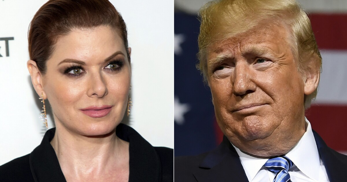 Image result for Debra Messing says 'MAGA' supporters 'will die,' blasts Trump's coronavirus response