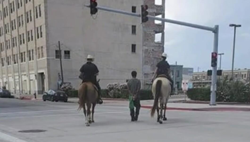 Αποτέλεσμα εικόνας για galveston texas inmate horses