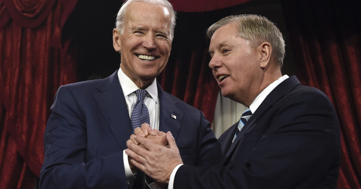 'Can't hold grudges': Biden says he is still friends with Lindsey Graham despite 'hurtful' Hunter attacks
