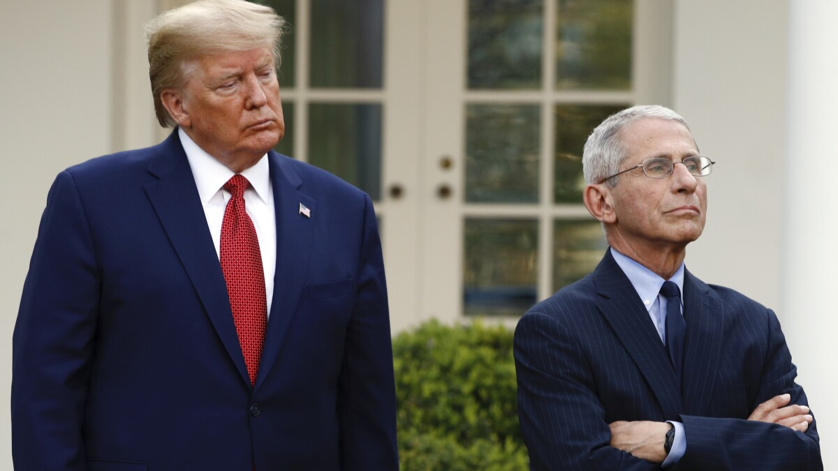 'A little on the short side for the NBA': Trump touts Fauci's basketball career
