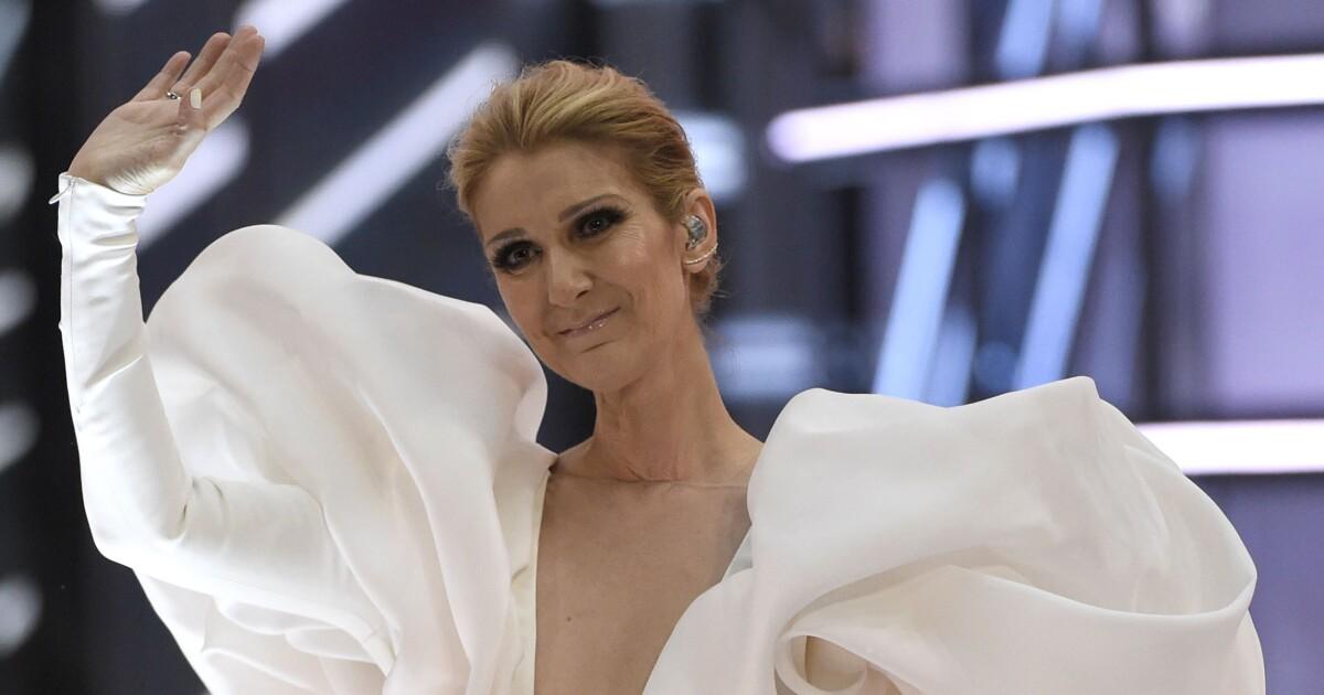 8e8b05d67d73 'That's the Way It Is'? Celine Dion touts new gender-neutral clothing line