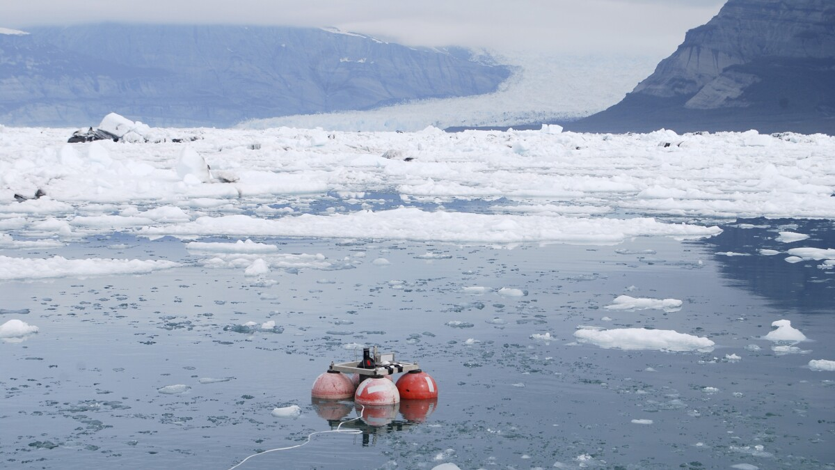 Environmental apocalypse predictions have failed for half a century