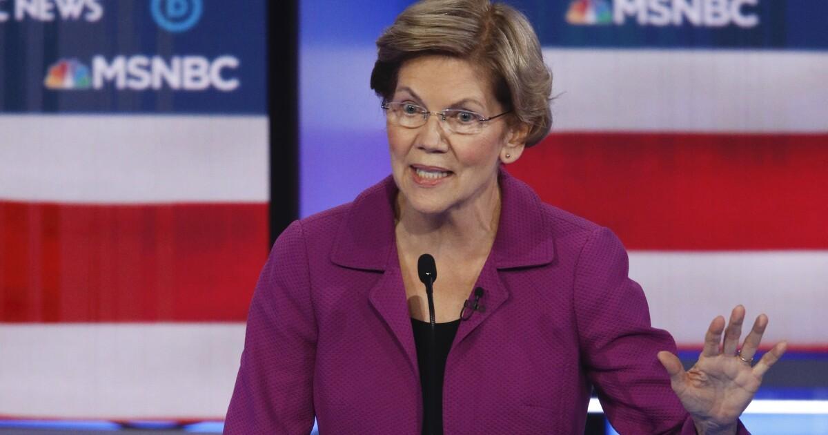 Warren dominates Democratic debate, but is it too late?