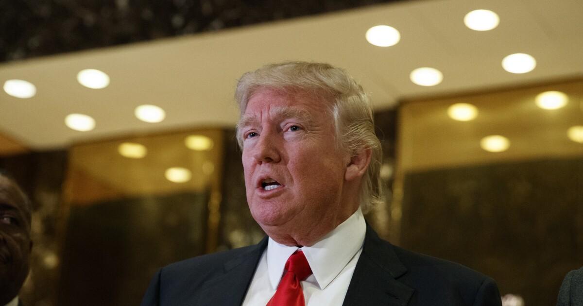 Mueller investigator assisting New York prosecutors in Trump Organization case: Report
