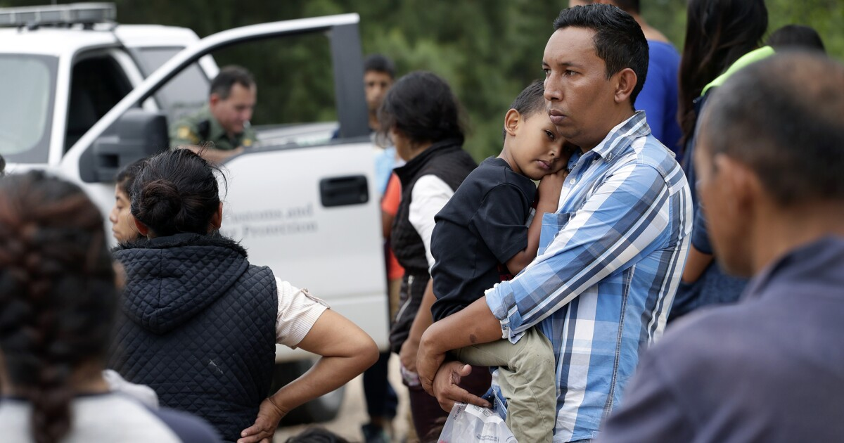 DNA tests reveal 30% of suspected fraudulent migrant families were unrelated