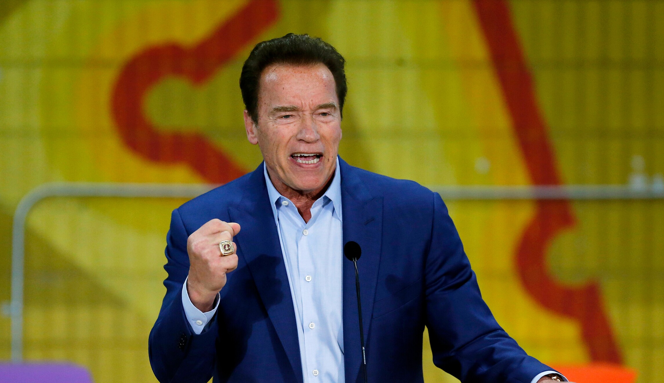 Arnold Schwarzenegger Channels Mr Freeze After Troll