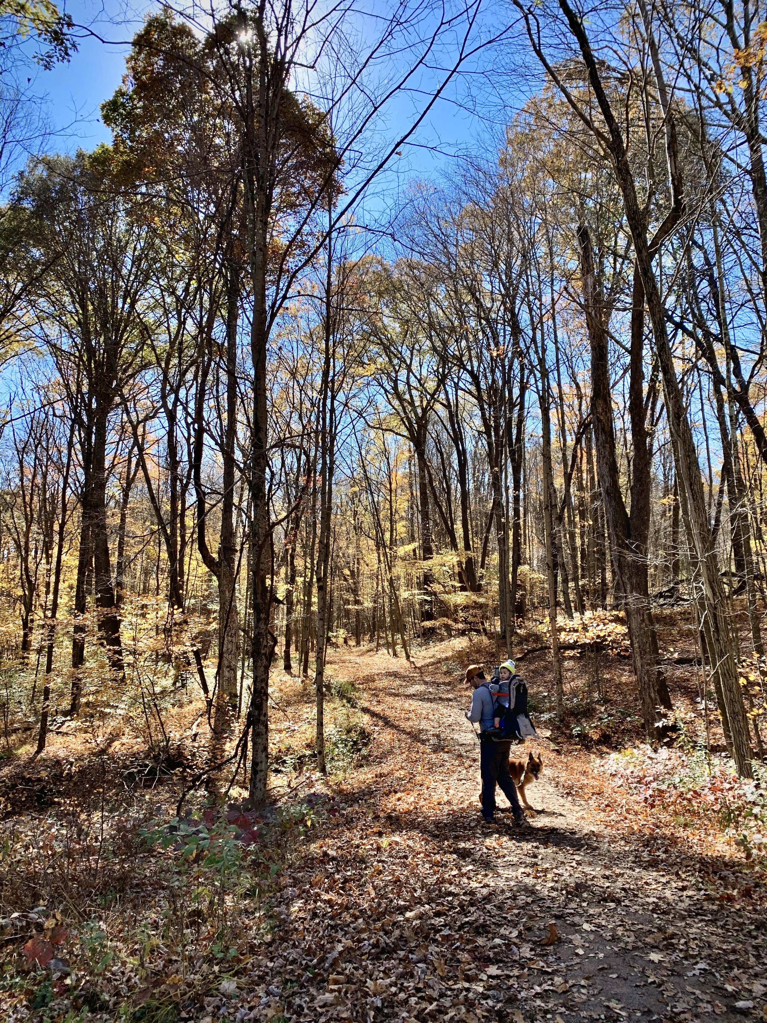 LAUREL HILL, Pa - Hikers enjoy the trail at Laurel Hill State Park.jpeg.jpeg