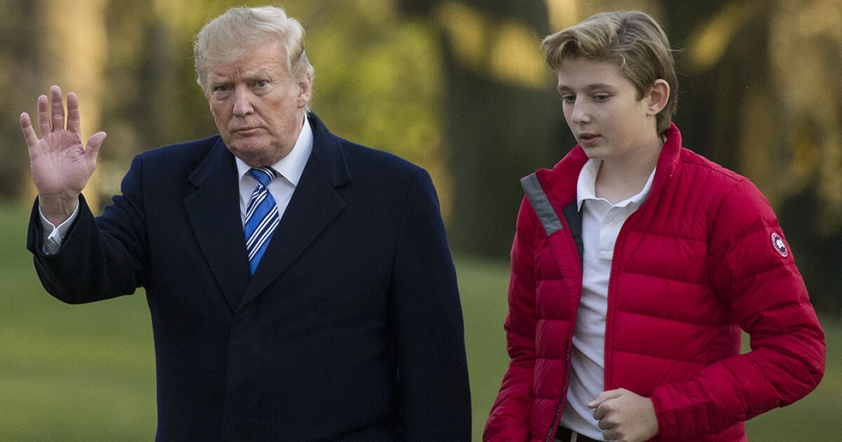Hollywood Screenplay Depicts Barron Trump Trying To Sabotage