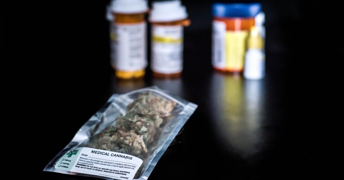 Church suspends rules against marijuana investment