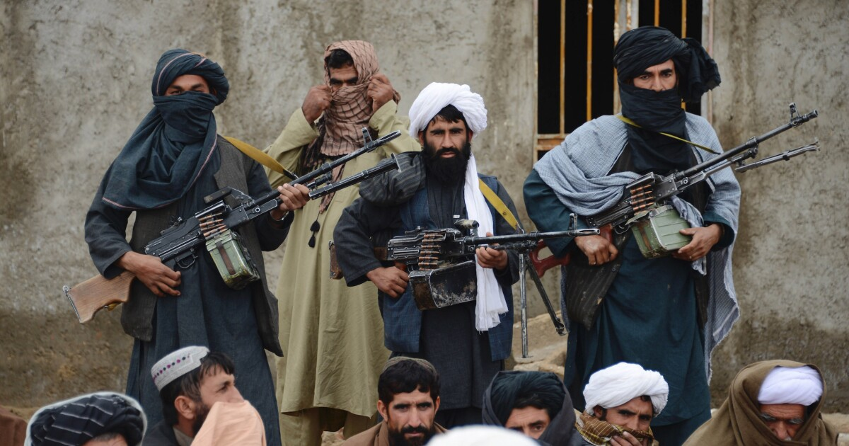 Hit the Taliban as soon as Eid cease fire ends