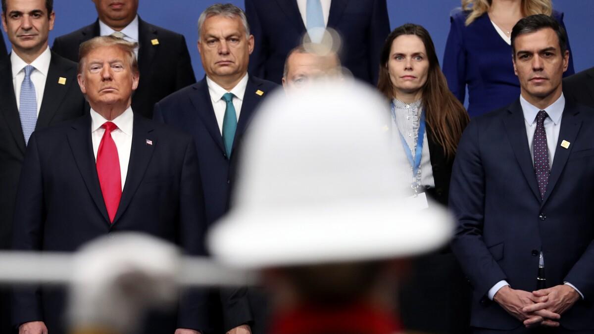 'You need more': Hungary praises China tech giant despite NATO warning