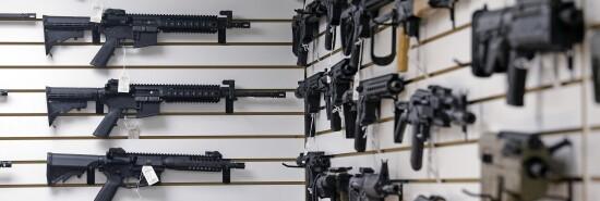 Shooting Gun Debate firearms