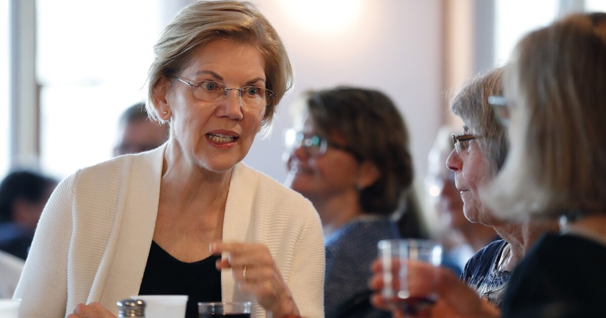 Elizabeth Warren: For-profit charter schools are 'a real problem'