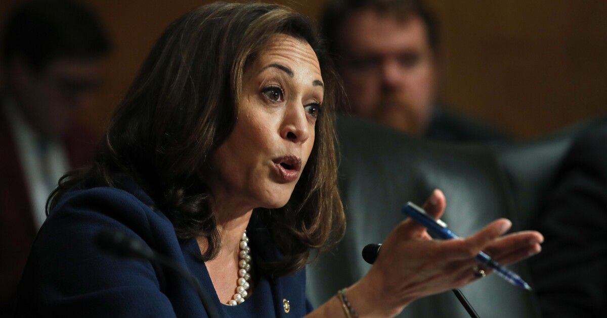 Former ICE chief rips Kamala Harris for drawing 'disgusting' parallel between ICE, KKK