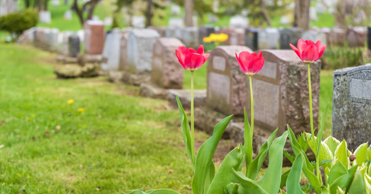 Church says body of atheist can be exhumed after 'mistaken' burial 20 years ago