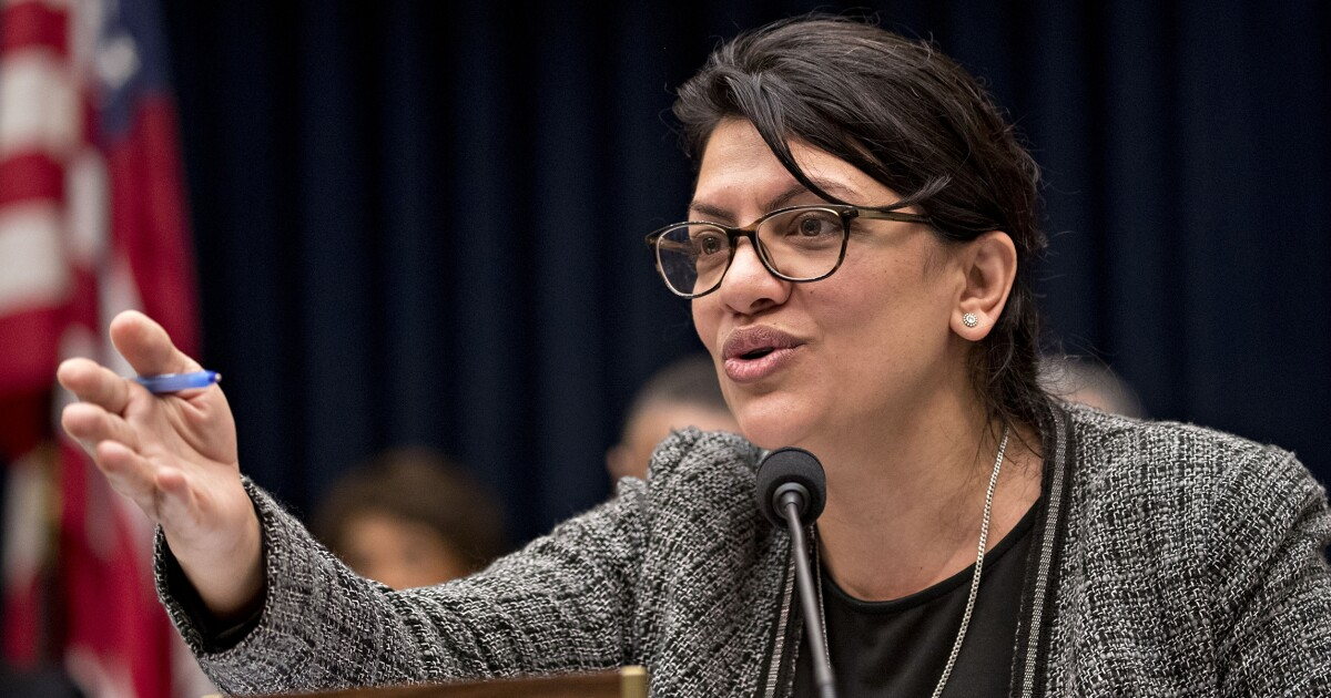 'Do I look white to you?' Tlaib accuses census director of 'erasing' people of Middle Eastern descent