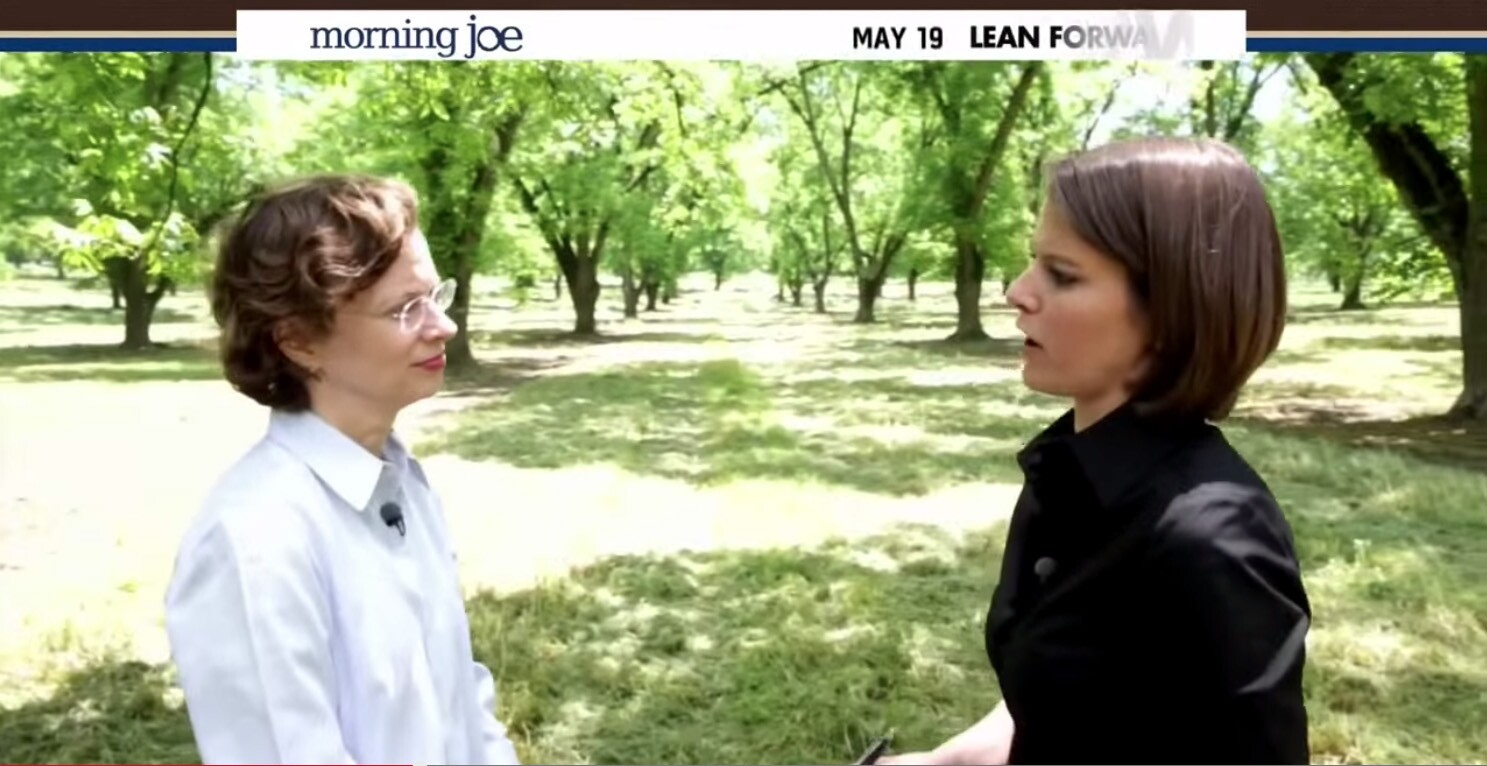 Kasie Hunt Wedding.Kasie Hunt Msnbc S Reporter With A Knack For Tripping Up Politicians