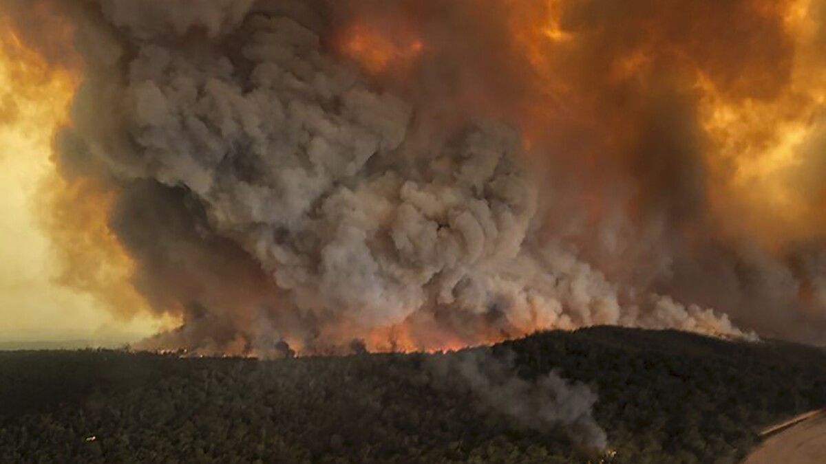 Don't blame climate change for Australian wildfires