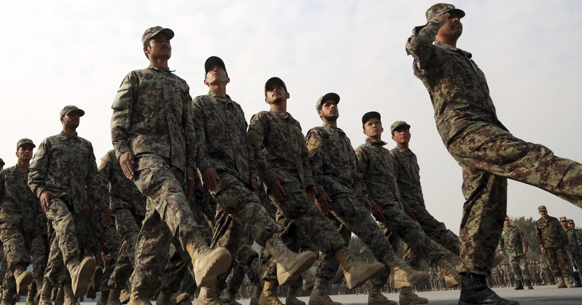 Auditor: DOD can't assess progress advising Afghan forces