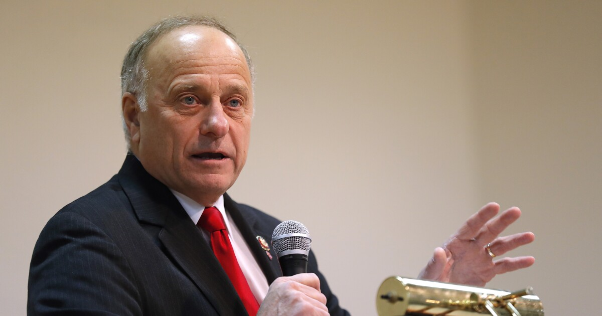 Steve King on whether white societies are superior: 'America is not a white society'